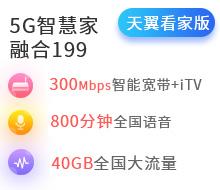 5G智慧家融合199