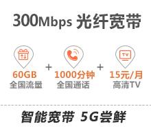 5G融合套餐