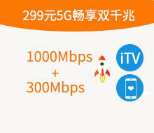 299元5G畅享融合双千兆