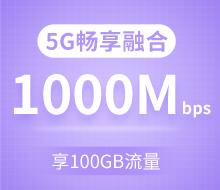 5G畅享融合套餐299档