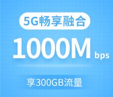 5G畅享融合套餐599档