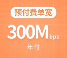 预付费单宽300Mbps